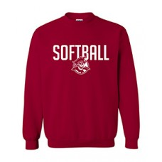 Park SOFTBALL Crewneck Sweatshirt (Cardinal Red)